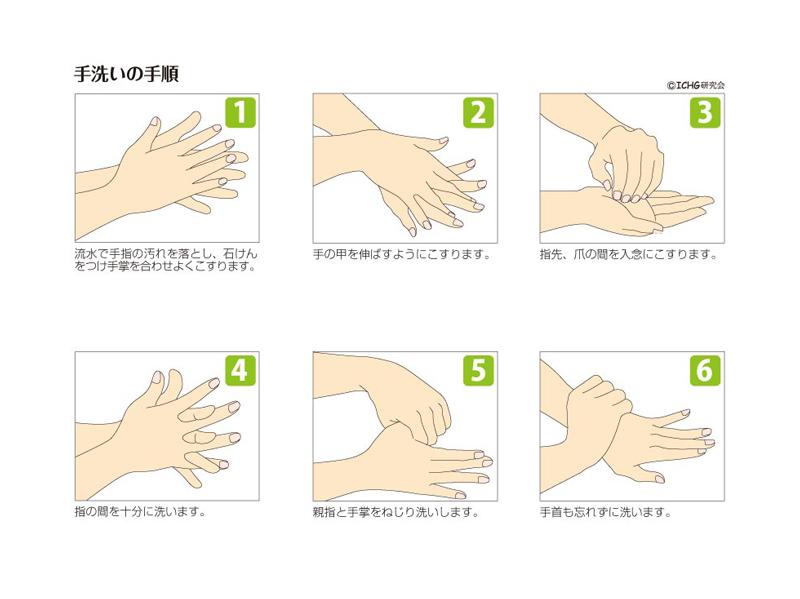 手洗いの順序